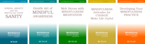 image of 5 book covers for the BOOK Series, Mindfulness: Stop the Struggle