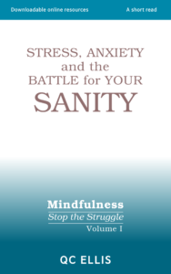 Book cover image for: Stress, Anxiety and the Battle for Your Sanity